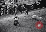 Image of rodeo Houston Texas USA, 1966, second 24 stock footage video 65675032846