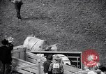 Image of rodeo Houston Texas USA, 1966, second 28 stock footage video 65675032846