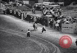 Image of rodeo Houston Texas USA, 1966, second 38 stock footage video 65675032846