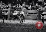 Image of rodeo Houston Texas USA, 1966, second 45 stock footage video 65675032846