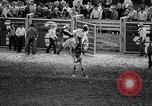 Image of rodeo Houston Texas USA, 1966, second 46 stock footage video 65675032846
