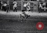 Image of rodeo Houston Texas USA, 1966, second 47 stock footage video 65675032846