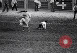 Image of rodeo Houston Texas USA, 1966, second 48 stock footage video 65675032846