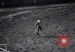 Image of rodeo Houston Texas USA, 1966, second 53 stock footage video 65675032846
