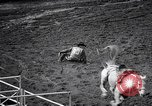 Image of rodeo Houston Texas USA, 1966, second 55 stock footage video 65675032846