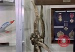 Image of trophies United States USA, 1975, second 18 stock footage video 65675032910