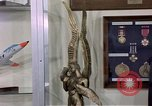 Image of trophies United States USA, 1975, second 19 stock footage video 65675032910
