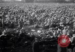 Image of Destruction in Germany from World War 2 Germany, 1945, second 24 stock footage video 65675032952