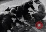 Image of Hungarian Revolution Hungary, 1956, second 1 stock footage video 65675033228