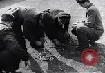 Image of Hungarian Revolution Hungary, 1956, second 4 stock footage video 65675033228