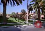 Image of Palm tree lined street in neighborhood Los Angeles California USA, 1976, second 15 stock footage video 65675033263