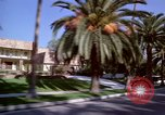 Image of Palm tree lined street in neighborhood Los Angeles California USA, 1976, second 18 stock footage video 65675033263