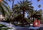 Image of Palm tree lined street in neighborhood Los Angeles California USA, 1976, second 19 stock footage video 65675033263