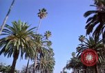 Image of Palm tree lined street in neighborhood Los Angeles California USA, 1976, second 24 stock footage video 65675033263
