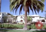 Image of Palm tree lined street in neighborhood Los Angeles California USA, 1976, second 34 stock footage video 65675033263