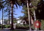 Image of Palm tree lined street in neighborhood Los Angeles California USA, 1976, second 38 stock footage video 65675033263