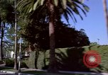 Image of Palm tree lined street in neighborhood Los Angeles California USA, 1976, second 39 stock footage video 65675033263