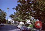 Image of Palm tree lined street in neighborhood Los Angeles California USA, 1976, second 48 stock footage video 65675033263