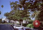 Image of Palm tree lined street in neighborhood Los Angeles California USA, 1976, second 49 stock footage video 65675033263