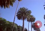 Image of Palm tree lined street in neighborhood Los Angeles California USA, 1976, second 53 stock footage video 65675033263