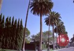 Image of Palm tree lined street in neighborhood Los Angeles California USA, 1976, second 57 stock footage video 65675033263