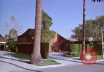 Image of Palm tree lined street in neighborhood Los Angeles California USA, 1976, second 59 stock footage video 65675033263