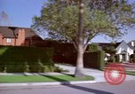 Image of Palm tree lined street in neighborhood Los Angeles California USA, 1976, second 62 stock footage video 65675033263