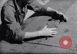 Image of Loading of F-51 guns Korea, 1951, second 55 stock footage video 65675033388