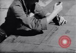 Image of Loading of F-51 guns Korea, 1951, second 61 stock footage video 65675033388