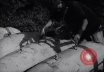 Image of United States soldiers Korea, 1951, second 34 stock footage video 65675033401