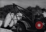 Image of United States soldiers Korea, 1951, second 37 stock footage video 65675033401