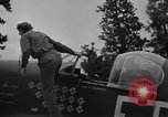 Image of Captain Don M. Beerbower Criqueville, France, 1944, second 51 stock footage video 65675033413