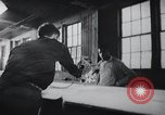 Image of job training for Mentally disabled Connecticut USA, 1969, second 17 stock footage video 65675033429