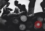Image of Allied Forces Tunisia North Africa, 1943, second 52 stock footage video 65675033479