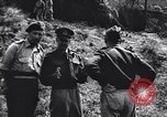 Image of Allied Forces Tunisia North Africa, 1943, second 16 stock footage video 65675033480