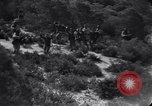 Image of 15 Divisions of German soldiers surrender to Allies to end Tunisian campaign Tunisia North Africa, 1943, second 3 stock footage video 65675033514