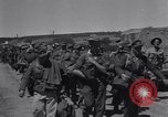 Image of 15 Divisions of German soldiers surrender to Allies to end Tunisian campaign Tunisia North Africa, 1943, second 13 stock footage video 65675033514