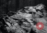 Image of German atrocities Germany, 1945, second 18 stock footage video 65675033529
