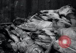 Image of German atrocities Germany, 1945, second 19 stock footage video 65675033529