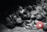 Image of German atrocities Germany, 1945, second 48 stock footage video 65675033529