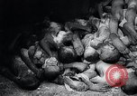 Image of German atrocities Germany, 1945, second 50 stock footage video 65675033529