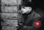 Image of German atrocities Germany, 1945, second 55 stock footage video 65675033529