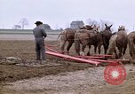 Image of Farmer with horses and mules plows field New York United States USA, 1970, second 2 stock footage video 65675040536