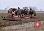 Image of Farmer with horses and mules plows field New York United States USA, 1970, second 5 stock footage video 65675040536