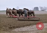 Image of Farmer with horses and mules plows field New York United States USA, 1970, second 7 stock footage video 65675040536