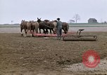 Image of Farmer with horses and mules plows field New York United States USA, 1970, second 11 stock footage video 65675040536