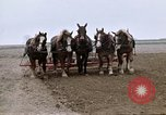 Image of Farmer with horses and mules plows field New York United States USA, 1970, second 37 stock footage video 65675040536