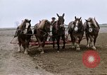 Image of Farmer with horses and mules plows field New York United States USA, 1970, second 39 stock footage video 65675040536