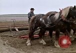 Image of Farmer with horses and mules plows field New York United States USA, 1970, second 45 stock footage video 65675040536