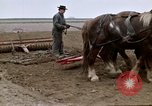Image of Farmer with horses and mules plows field New York United States USA, 1970, second 46 stock footage video 65675040536